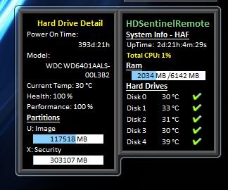 HDSentinelRemote Gadget drive detail