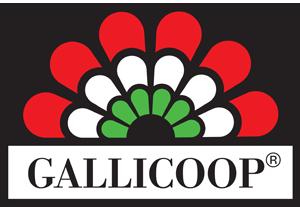 Gallicoop Zrt.